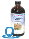Aloe Arborescens Formula, Q by Quantum Nutrition Labs